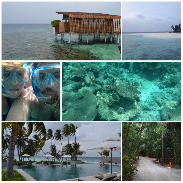 collage maldives